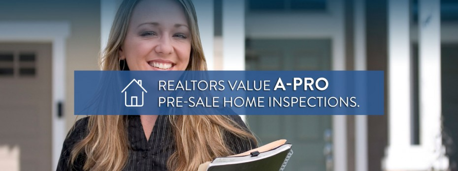 Ashburn Home Inspectors
